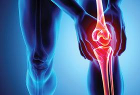 El ejercicio terapéutico alivia el dolor y no daña el cartílago de la rodilla ni provoca inflamación.
