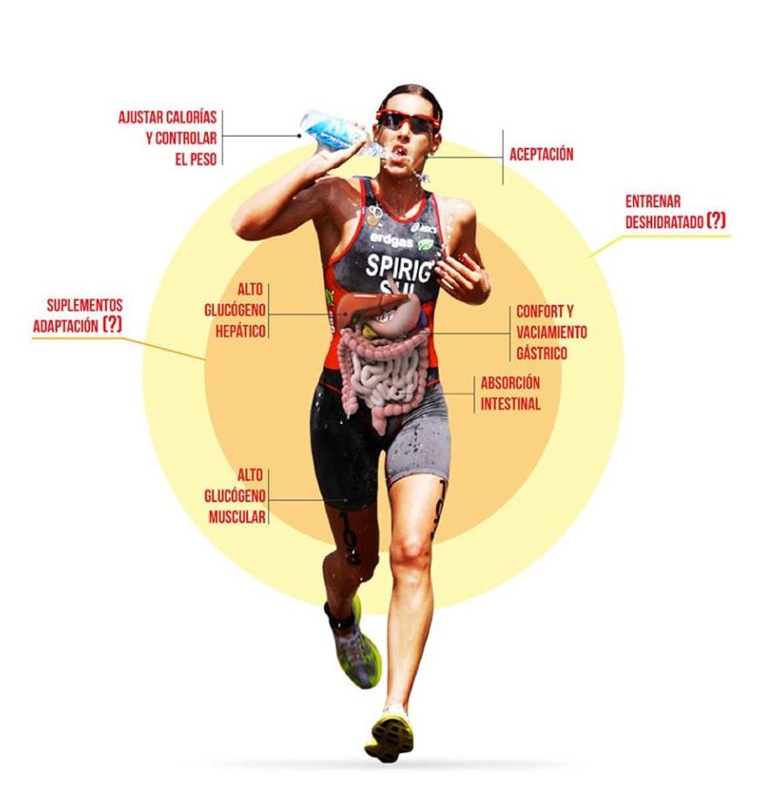 Entrenamiento del intestino para atletas